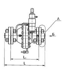 Общий вид и габаритные размеры РДУ Схема 1